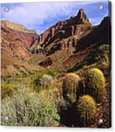 Stonecreek Canyon In The Grand Canyon Acrylic Print