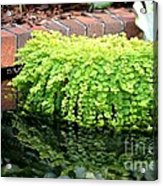 Stoneside Reflections Acrylic Print