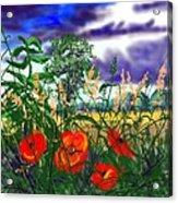 Storm Clouds And Poppies Acrylic Print