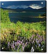 Storm In Dillon Acrylic Print