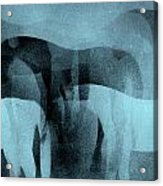 Storm Shadows Acrylic Print