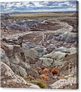 Stormy Morning At Petrified Forest  Acrylic Print