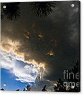 Stormy Sky Acrylic Print by Terry Elniski