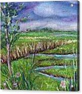 Stormy Wetlands Acrylic Print
