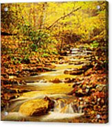 Streams Of Gold Acrylic Print