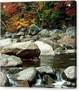 Streamside Color Acrylic Print