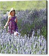 Stroll Through The Lavender Acrylic Print