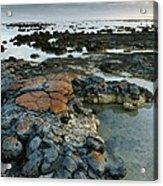 Stromatolites In Australia Acrylic Print