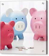 Studio Shot Of Piggy Banks Acrylic Print
