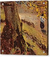 Study Of Tree Trunks Acrylic Print
