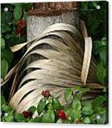 Stump And Fronds Acrylic Print