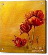 Stylish Poppies Acrylic Print