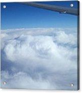 Sublime Flight Acrylic Print