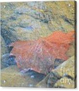 Submergence Acrylic Print