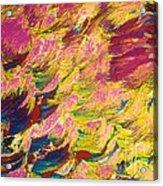 Sugar Crystal Acrylic Print