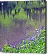 Summer Abstract At Tipsoo Lake Acrylic Print