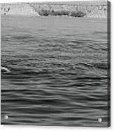 Summer At Lake Mead Acrylic Print