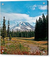 Summer At Mt. Hood In Oregon Acrylic Print