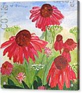 Summer Coneflowers Acrylic Print