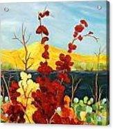 Summer Foliage Acrylic Print