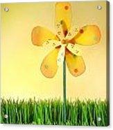 Summer Fun In The Grass Acrylic Print by Sandra Cunningham