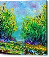 Summer In The Wood 452160 Acrylic Print