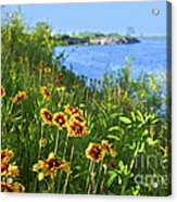 Summer In Toronto Park Acrylic Print by Elena Elisseeva