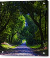 Summer Lane Acrylic Print