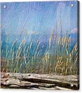Summer Rendezvous Acrylic Print