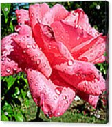 Summer Shower Stunner Acrylic Print