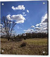 Summer Sky In The Fall Acrylic Print