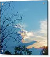 Summer Sky Acrylic Print by Juliana  Blessington
