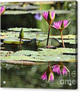Summertime Magic Acrylic Print