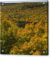 Summit Peak Autumn 10 Acrylic Print
