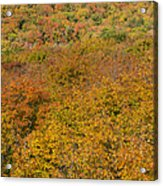 Summit Peak Autumn 15 Acrylic Print