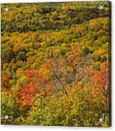 Summit Peak Autumn 6 Acrylic Print