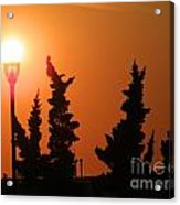 Sun Post Acrylic Print by Laurence Oliver