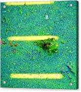 Sun Spots Acrylic Print by Art Dingo