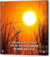 Sundown Beauty Acrylic Print