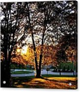 Sundown In Stanley Park Acrylic Print