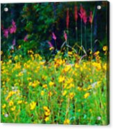 Sunflowers And Grasses Acrylic Print