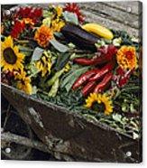 Sunflowers, Dahlias, Eggplants, Pepper Acrylic Print