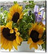 Sunflowers Four Acrylic Print