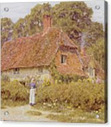 Sunflowers By Helen Allingham Acrylic Print