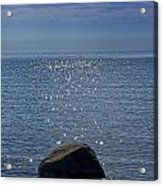Sunlight Sparkling On The Water At Sturgeon Point Acrylic Print