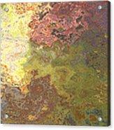 Sunlit Bricks Abstract Acrylic Print
