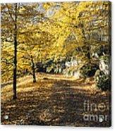 Sunny Day In The Autumn Park Acrylic Print