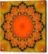Sunny I Acrylic Print