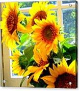 Sunny In Md 1 Acrylic Print