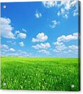 Sunny Spring Landscape Acrylic Print